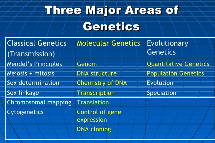 introduction-to-molecular-genetics-4-728