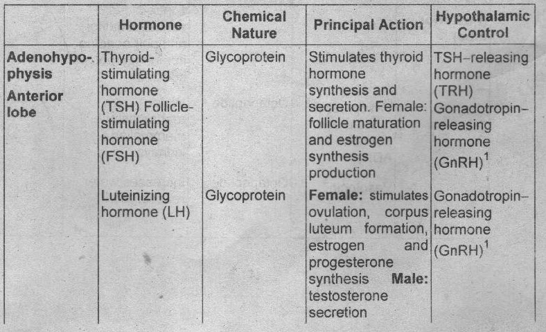 Answer of the Question of Endocrine System and Chemical Messengers ...